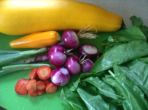 Harvest from community garden plot