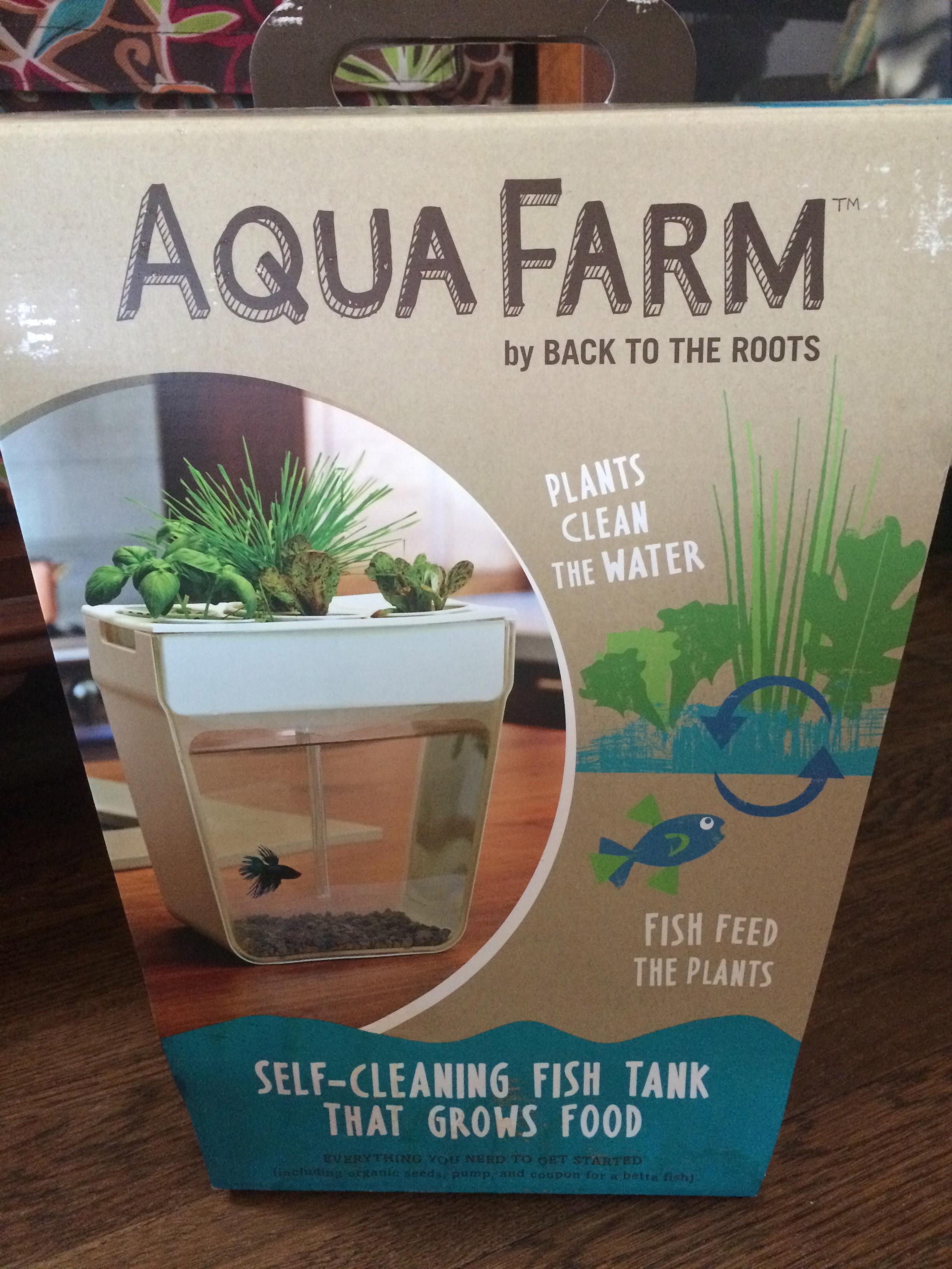 fish tank peasforpeace